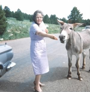 Minnie & the Donkeys c 1961