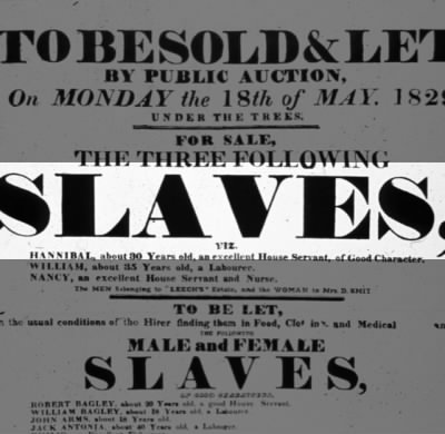 Slaves to be Sold or Let