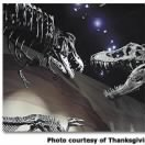 thanksgiving_point_2trex.jpg