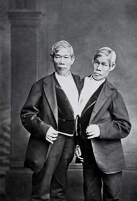 Chang and Eng Bunker, the original siamese twins
