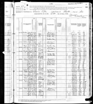 1880 Lewis, Holt Co., MO Census