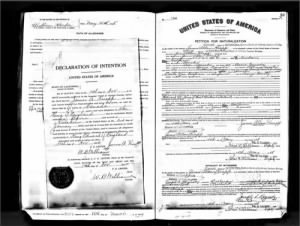 James Allen Knapp - Naturalization papers