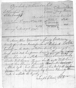 Jacob Helsebeck--Stokes Land Grant No.252.jpg