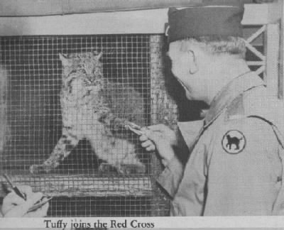 Tuffy Joins The Red Cross