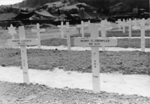 HCC Grave in Pacific.jpg