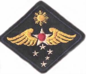 WWII Army Aviation Engineer patch.jpg