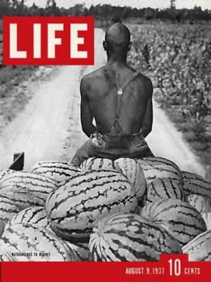 cv Black Man on Watermelon Cart.jpg