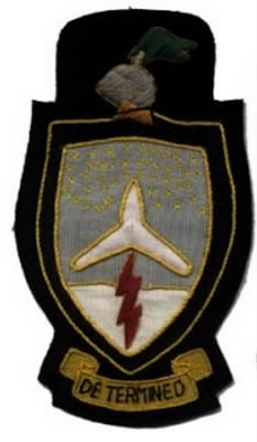 352nd Bombardment Squadron patch.jpg